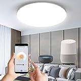 Anten Alexa Smart home 24W Deckenlampe,led deckenleuchte...